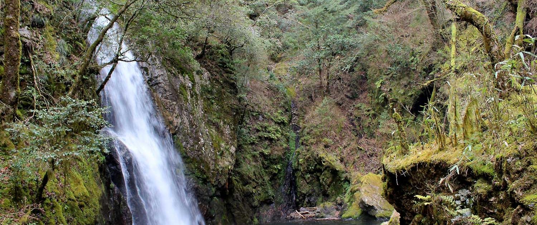 大滝自然森林公園